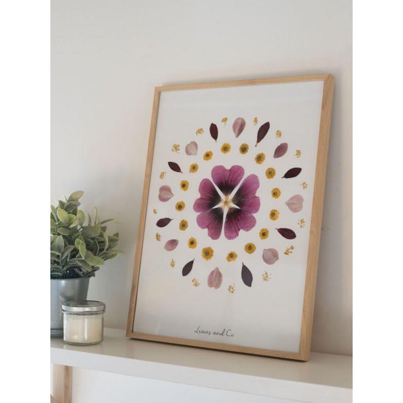 Herbier de fleurs séchées - Rose trémière Les herbiers
